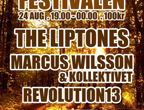 The Liptones skanks Falköping at Plantisfestivalen, August 24!